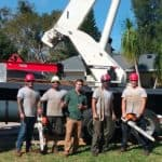 Longwood, Florida Tree Company